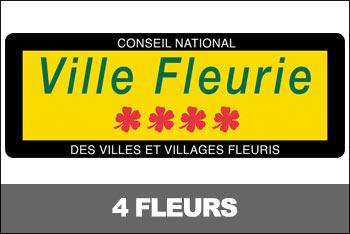 vignettes-4-fleurs